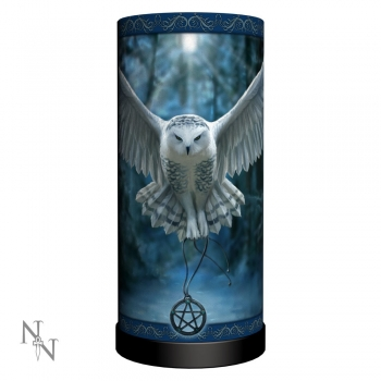 Awaken Your MagicStandlampe 27.5cm - Anne Stokes