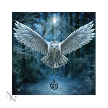 Leuchtkissen Awaken your magic Soft Textil 42 x 42 cm - Anne Stokes