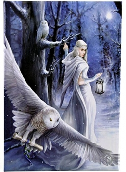 Midnight Messenger - Anne Stokes