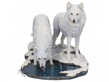 Warriors of Winter - Lisa Parker 35cm