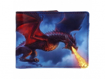 Men's Wallet - Geldbörse - Fire From The Sky - James Ryman