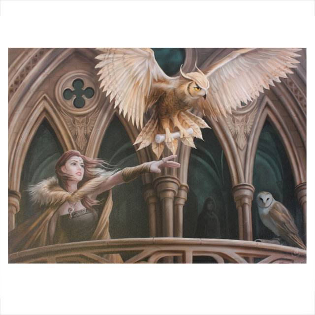 Fosshop Large Owl Messenger Wall 70 X 50 Cm Anne Stokes