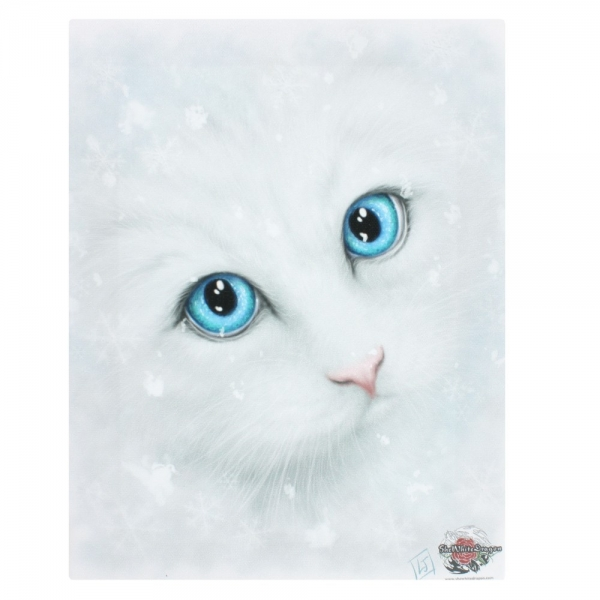 Linda Jones Winter Cat Bild 25 x 19 cm