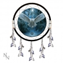 Awaken Your Magic Dreamcatcher 60cm - Anne Stokes
