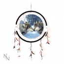 Wild Affection Dreamcatcher 60cm